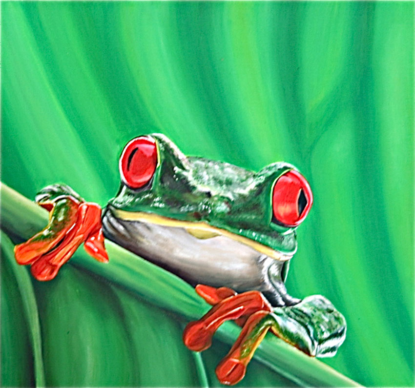 kleiner grüner Frosch